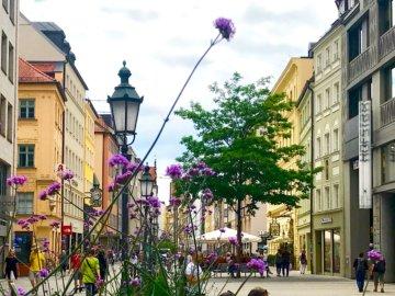 München-Krimis, Sabine Vöhringer. Die Sendlinger Straße